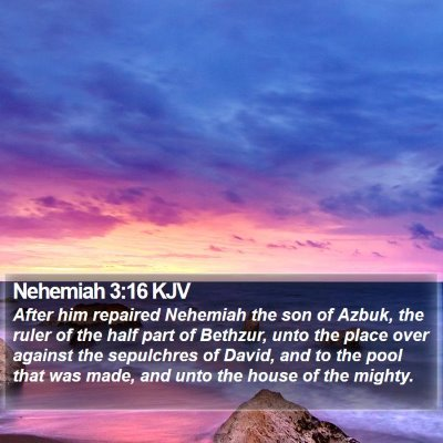 Nehemiah 3:16 KJV Bible Verse Image