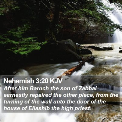 Nehemiah 3:20 KJV Bible Verse Image