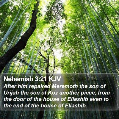 Nehemiah 3:21 KJV Bible Verse Image