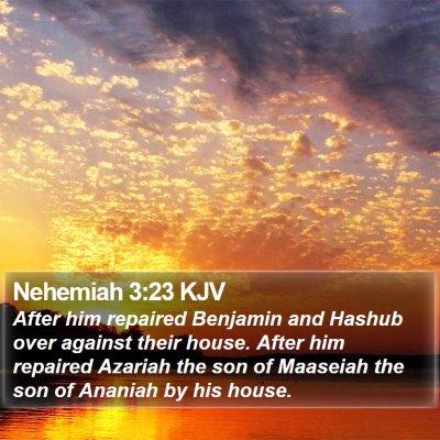 Nehemiah 3:23 KJV Bible Verse Image