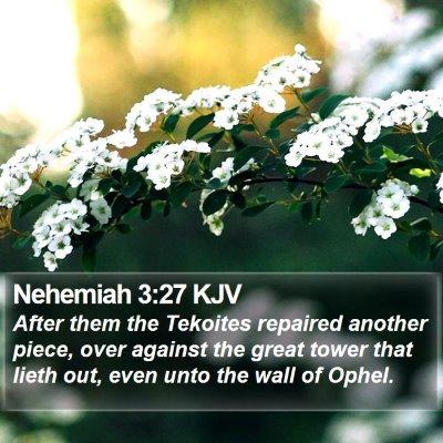 Nehemiah 3:27 KJV Bible Verse Image