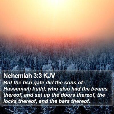 Nehemiah 3:3 KJV Bible Verse Image