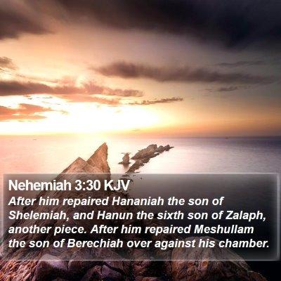 Nehemiah 3:30 KJV Bible Verse Image