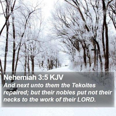 Nehemiah 3:5 KJV Bible Verse Image