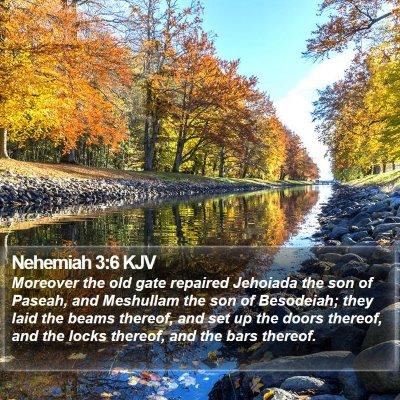 Nehemiah 3:6 KJV Bible Verse Image
