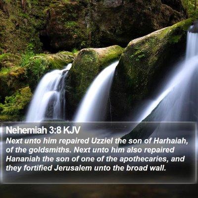 Nehemiah 3:8 KJV Bible Verse Image