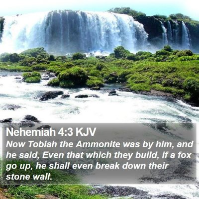 Nehemiah 4:3 KJV Bible Verse Image