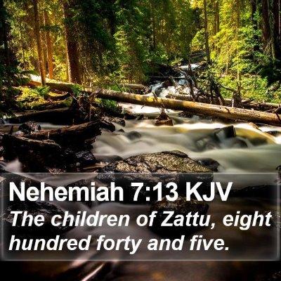 Nehemiah 7:13 KJV Bible Verse Image