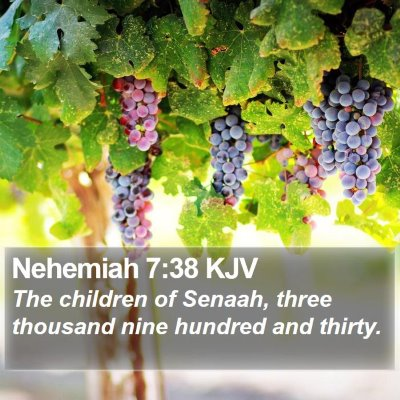 Nehemiah 7:38 KJV Bible Verse Image
