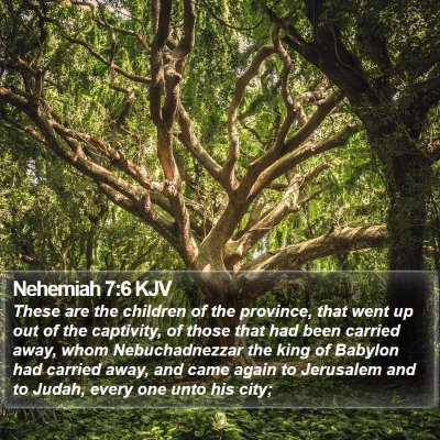 Nehemiah 7:6 KJV Bible Verse Image