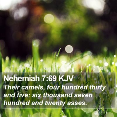 Nehemiah 7:69 KJV Bible Verse Image