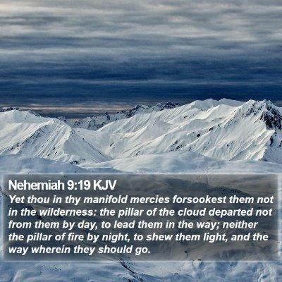 Nehemiah 9:19 KJV Bible Verse Image