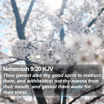 Nehemiah 9:20 KJV Bible Verse Image