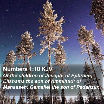 Numbers 1:10 KJV Bible Verse Image