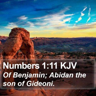 Numbers 1:11 KJV Bible Verse Image