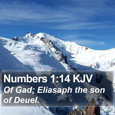 Numbers 1:14 KJV Bible Verse Image