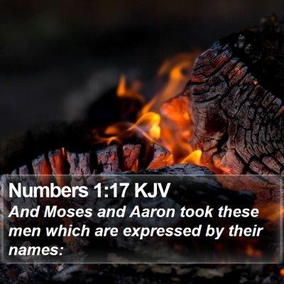 Numbers 1:17 KJV Bible Verse Image