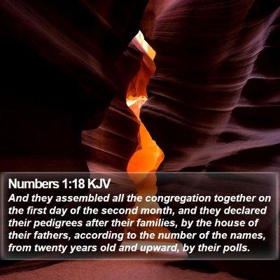 Numbers 1:18 KJV Bible Verse Image