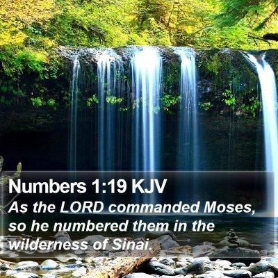Numbers 1:19 KJV Bible Verse Image