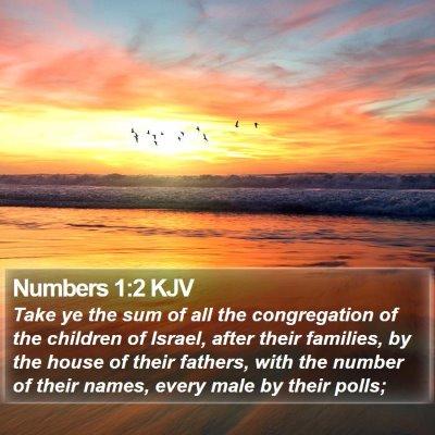 Numbers 1:2 KJV Bible Verse Image