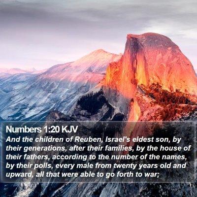 Numbers 1:20 KJV Bible Verse Image