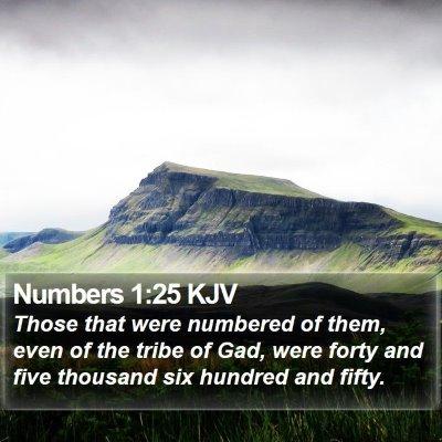 Numbers 1:25 KJV Bible Verse Image