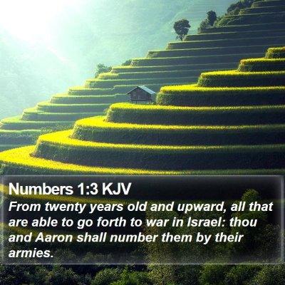 Numbers 1:3 KJV Bible Verse Image