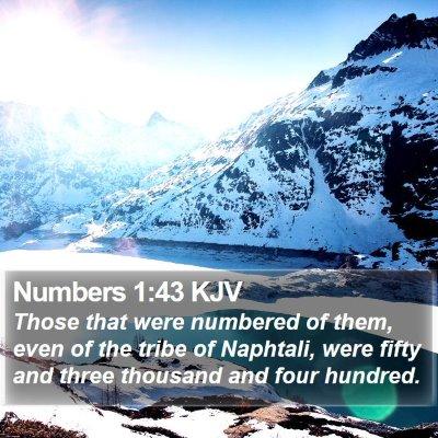 Numbers 1:43 KJV Bible Verse Image