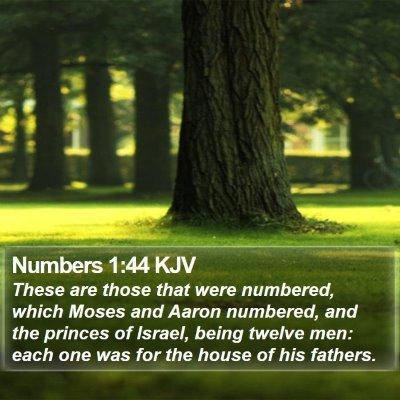 Numbers 1:44 KJV Bible Verse Image