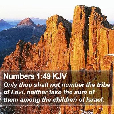 Numbers 1:49 KJV Bible Verse Image