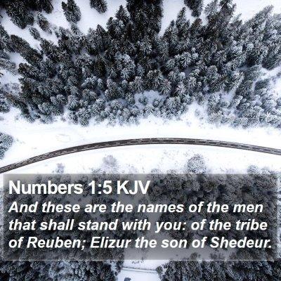 Numbers 1:5 KJV Bible Verse Image