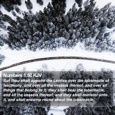 Numbers 1:50 KJV Bible Verse Image