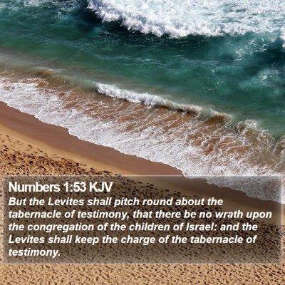 Numbers 1:53 KJV Bible Verse Image