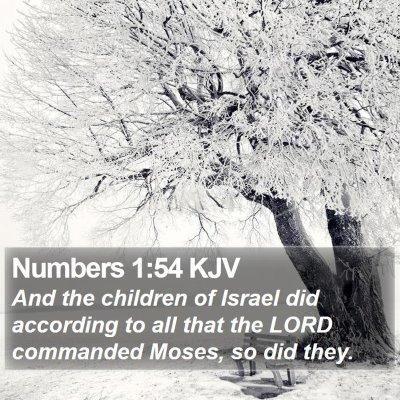 Numbers 1:54 KJV Bible Verse Image