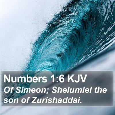 Numbers 1:6 KJV Bible Verse Image