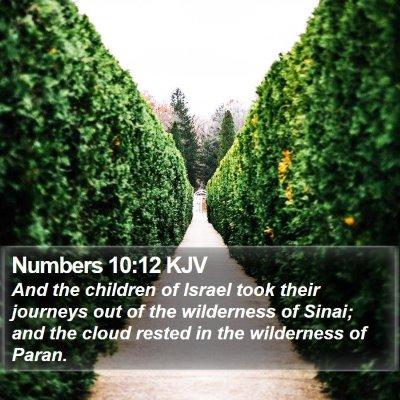 Numbers 10:12 KJV Bible Verse Image