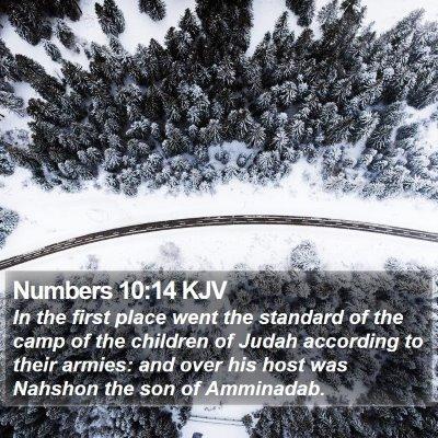 Numbers 10:14 KJV Bible Verse Image