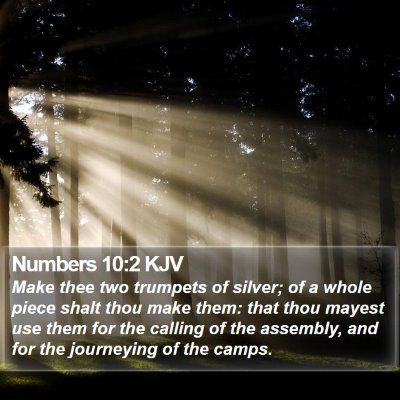 Numbers 10:2 KJV Bible Verse Image