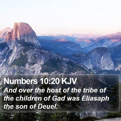 Numbers 10:20 KJV Bible Verse Image