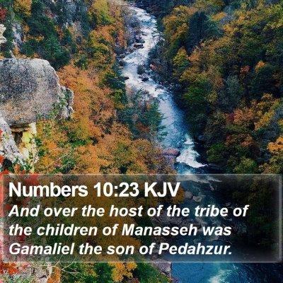Numbers 10:23 KJV Bible Verse Image