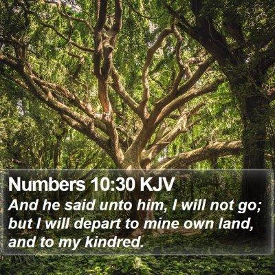 Numbers 10:30 KJV Bible Verse Image