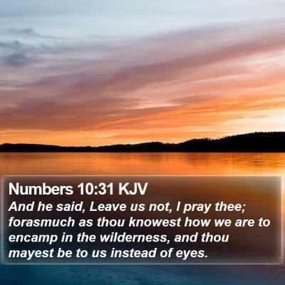 Numbers 10:31 KJV Bible Verse Image