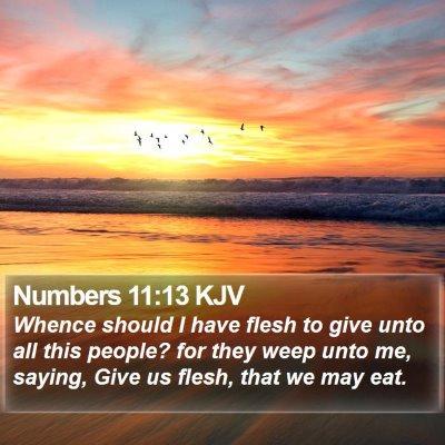 Numbers 11:13 KJV Bible Verse Image