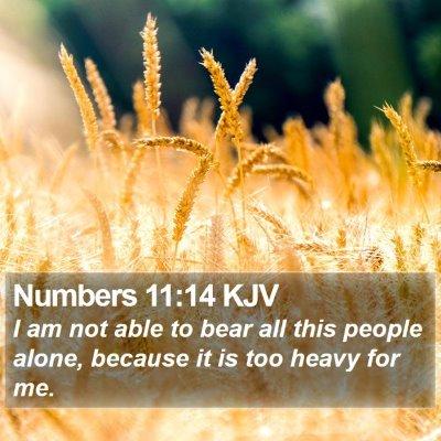 Numbers 11:14 KJV Bible Verse Image