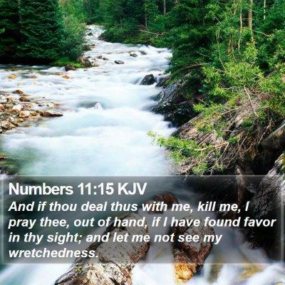 Numbers 11:15 KJV Bible Verse Image