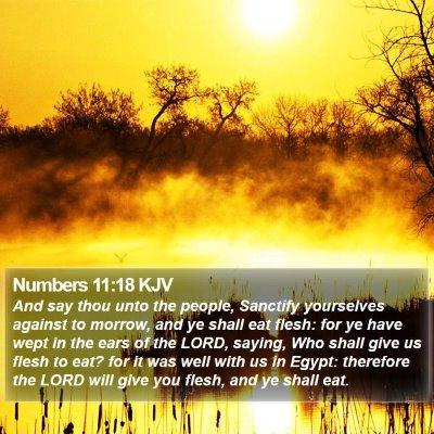 Numbers 11:18 KJV Bible Verse Image