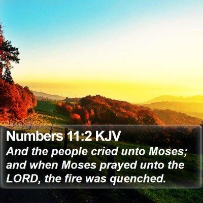 Numbers 11:2 KJV Bible Verse Image