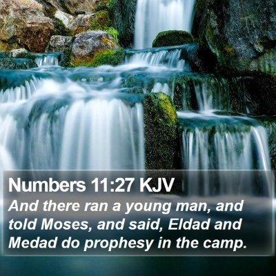 Numbers 11:27 KJV Bible Verse Image