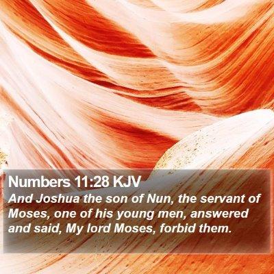 Numbers 11:28 KJV Bible Verse Image