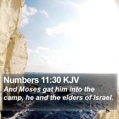 Numbers 11:30 KJV Bible Verse Image